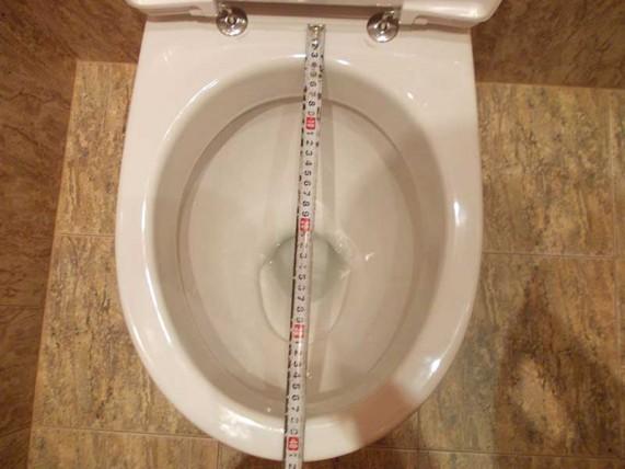 длина чаши унитаза
